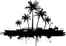 Grunge palm trees Royalty Free Stock Images
