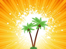 Grunge palm trees background Stock Image