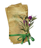 grunge paper with bouquet and green bow Royalty Free Stock Images