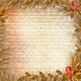 Grunge paper with bunch of rose Stock Images