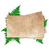 Grunge paper for congratulation Royalty Free Stock Image