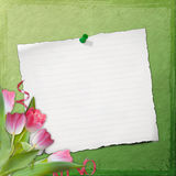 Grunge paper design for information Stock Photo