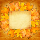 Grunge paper design in scrapbooking style with photoframe Royalty Free Stock Photo