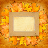 Grunge paper design in scrapbooking style with photoframe Royalty Free Stock Image