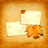 Grunge paper design in scrapbooking style with photoframe. And autumn foliage stock image