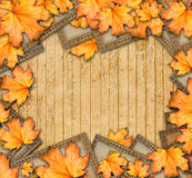 Grunge paper design in scrapbooking style with photoframe. And autumn foliage stock photos
