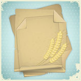 Grunge paper with ear of wheat Royalty Free Stock Photography
