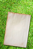 Grunge paper on green grass Stock Photo