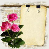 Grunge paper on old rope with roses Royalty Free Stock Photo