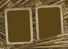 Grunge paper for photo with  bamboo. Grunge paper for photo with flowers and bamboo Stock Photography