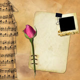 Grunge paper with rose on musical background Royalty Free Stock Image