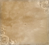 Grunge paper with roses. Royalty Free Stock Photos