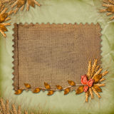 Grunge paper in scrapbooking style with bunch Royalty Free Stock Photo