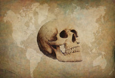 Grunge paper with skull Stock Images