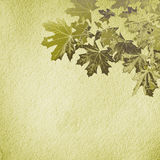Grunge paper texture.  abstract nature background Stock Photo