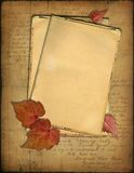 Grunge papers and autumn leaves Stock Images