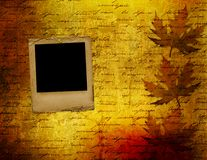 Grunge papers design with foliage Royalty Free Stock Images