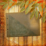 Grunge papers design with foliage Royalty Free Stock Photo