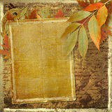 Grunge papers design with foliage and blank Stock Images