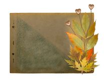 Grunge papers design with foliage and hearts Stock Images