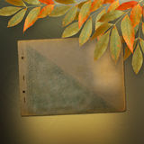 Grunge papers design with foliage and page album Stock Image