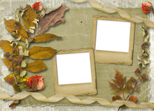 Grunge papers design with slides and foliage Stock Photos