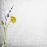 Grunge Papier mit Blumen Stock Abbildung