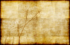 Grunge Parchment Floral. A Grunge Parchment Floral as Abstract Background Royalty Free Stock Images