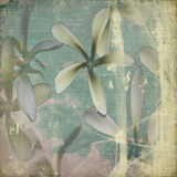 Grunge pastel flower background Stock Image