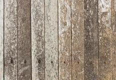 Grunge of pattern wood Stock Images