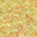 Grunge peach and chalk fluffy flower background. Textured background of grungypeach and white flowers royalty free stock images