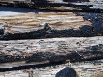 Grunge peeling paint black wood texture Royalty Free Stock Images
