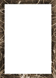 Grunge picture frame Royalty Free Stock Photo