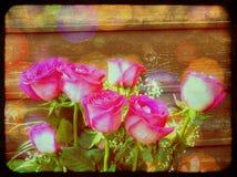 Grunge Pink Roses Royalty Free Stock Photos