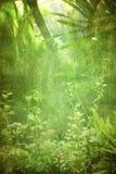 Grunge plants background Royalty Free Stock Image