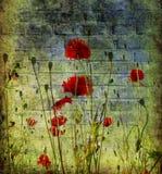 Grunge poppies background stock illustration