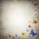 Grunge premade achtergrondmalplaatje met vlinders Royalty-vrije Stock Afbeelding