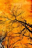 grunge projektu drzewo Obraz Royalty Free