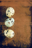 Grunge quail easter eggs. Royalty Free Stock Image