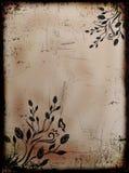 Grunge queimou o fundo floral com borboletas Imagem de Stock