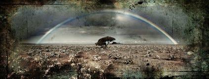 Grunge Rainbow Royalty Free Stock Image