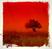 Grunge red background Royalty Free Stock Photo