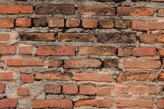 Grunge red brick wall background with copy space.  Royalty Free Stock Image