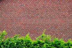 Free Grunge Red Brick Wall Background With Copy Space Stock Images - 119721154