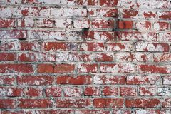 Grunge red brick wall stock photography