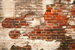 Grunge red brick wall texture. With remaining plaster (stucco royalty free stock images