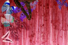 Grunge red color background with butterflies Royalty Free Stock Image