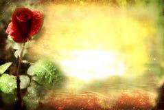 Grunge red rose card
