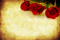 Grunge Red Roses Stock Photography