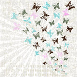 Grunge retro background with butterflies Stock Photography